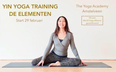 NIEUW! Yin Yoga Training (50 uurs) de Elementen
