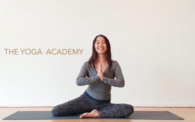 Yin Yoga en de Chakras(50 hrs WYA)